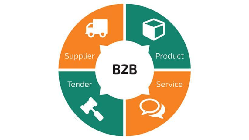 Elaboración portales WEB B2B