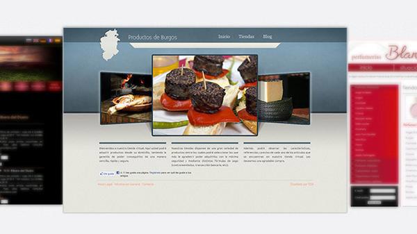 Página web con blog integrado