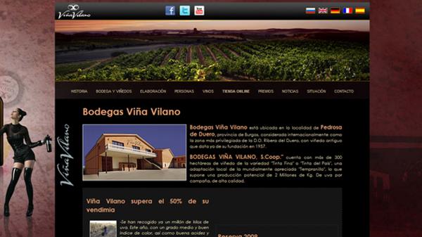 Bodegas Viña Vilano renueva su web